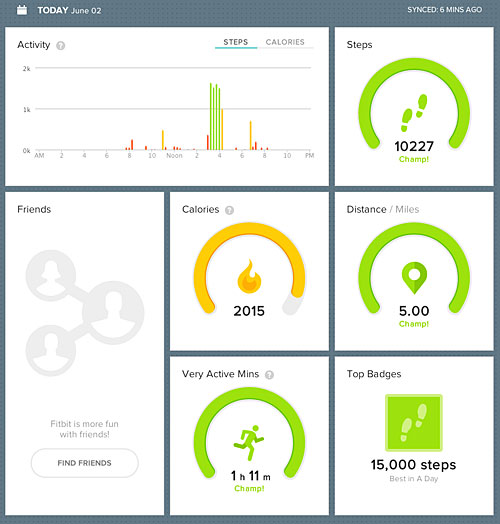 Screenshot of Fitbit Dashboard