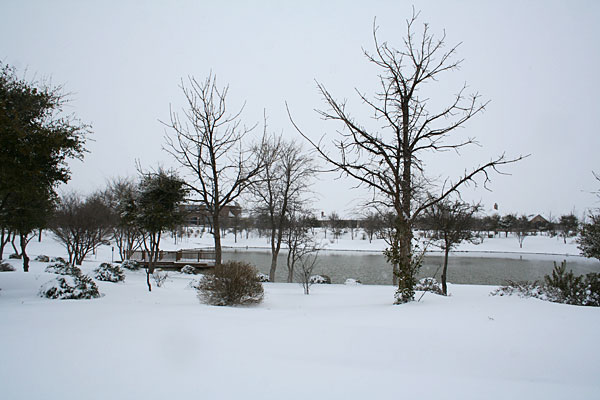 Photo of snow and pond