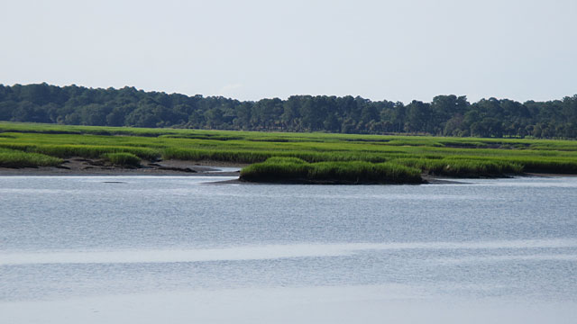 May River at low tide