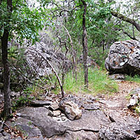 The trail passes some serious boulders.