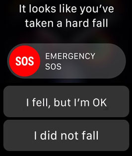 Photo - Apple Watch screen showing fall detection message