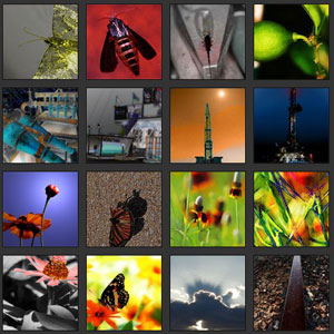 Partial screen grab of the Gallery index page