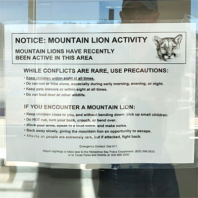 Sign at the post office warning us that we could be eaten by big feline predators