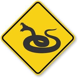 Venomous snake photos follow