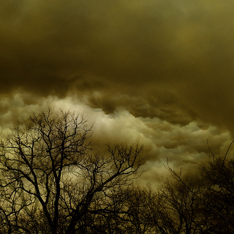 Photo - Storm clouds form a backdrop to leafless trees