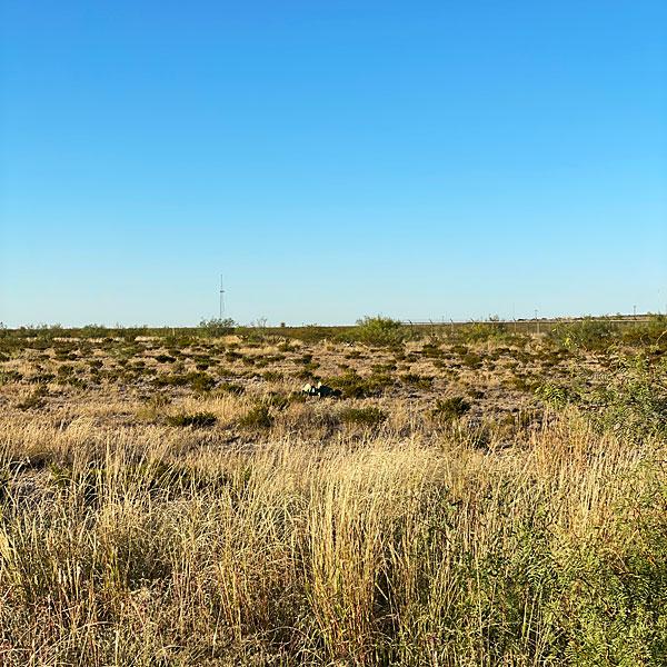 Photo of the horizon from Fort Stockton, Texas