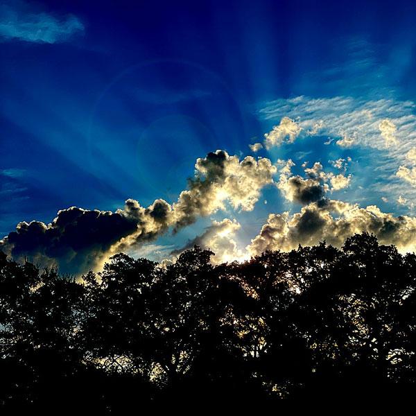 Photo of sunrise through the trees in Horseshoe Bay, Texas